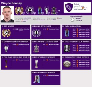wayne rooney achievements